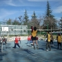 volleyball-finales-118_1024x768_0